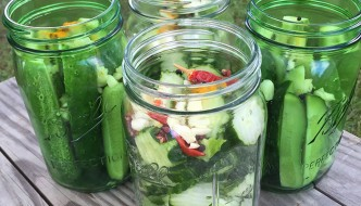 8/2/15- Refrigerator Dill Pickles + Vegan Cookbook Giveaway